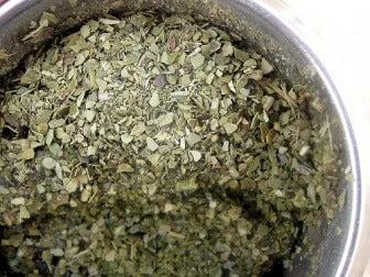 Té verde: composición, beneficios y usos