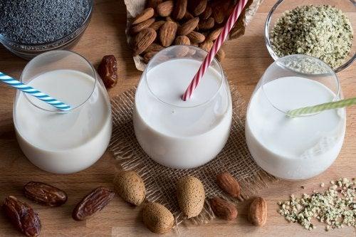 Recetas de leches vegetales para elaborarlas