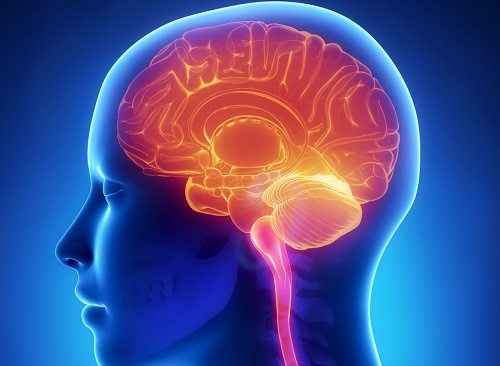 Hábitos que perjudican nuestra salud cerebral