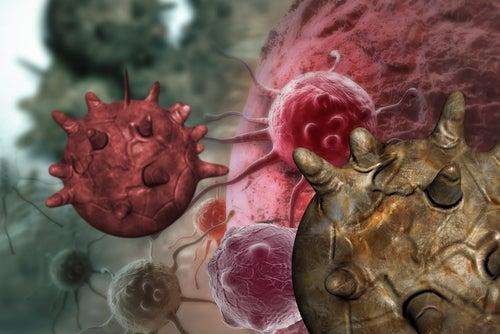 Mitos acerca de los alimentos cancerígenos