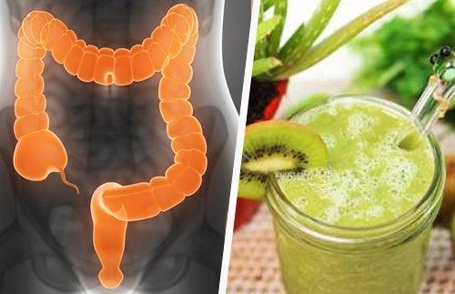 3 licuados curativos para el colon irritable