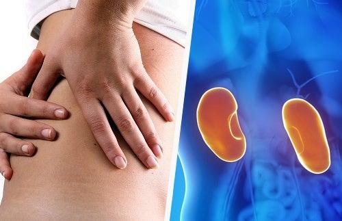 7 señales que te alertan de una enfermedad en los riñones