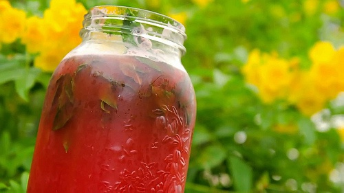 Descubre las deliciosas aguas aromatizadas naturalmente
