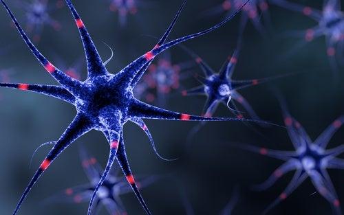 6 trucos para fortalecer tu sistema nervioso