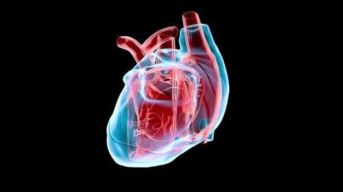 Monitorización no invasiva del gasto cardíaco