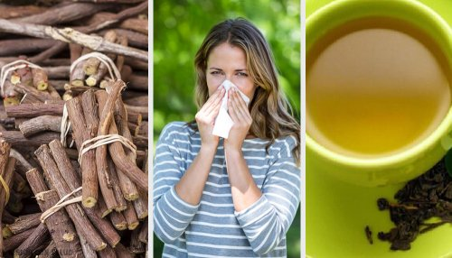 4 alternativas naturales para combatir la rinitis