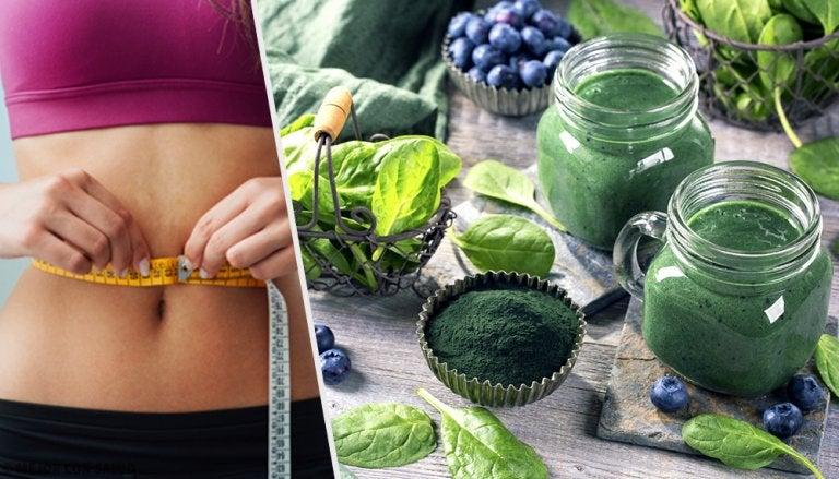 4 beneficios de la espirulina para bajar de peso