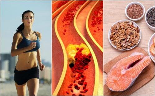 6 hábitos que te ayudan a controlar el colesterol de forma natural