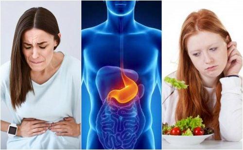 6 alimentos que debes comer si tienes úlceras en el estómago