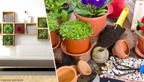 Revitaliza tu hogar con estas 10 ideas para decorar con plantas