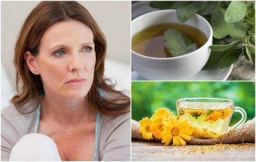 5 remedios naturales que te ayudan a reducir los calores de la menopausia