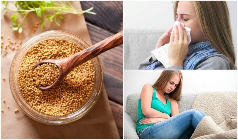 7 remedios naturales que puedes preparar con semillas de mostaza