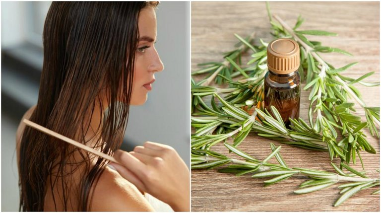 5 interesantes beneficios que el romero le brinda a tu cabello