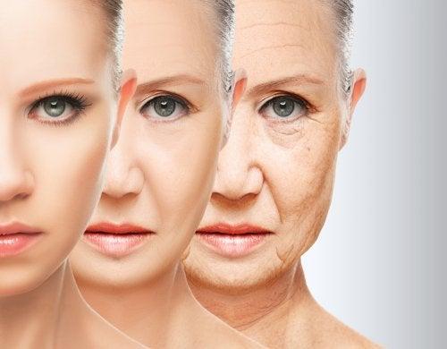 Hábitos alimenticios para combatir el envejecimiento prematuro