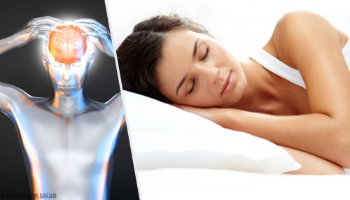 Melatonina: la hormona del sueño