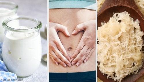 Alimentos probióticos para tu flora intestinal