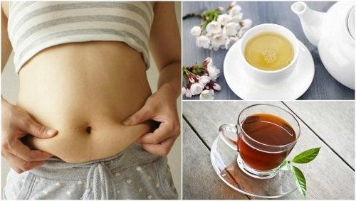 5 deliciosos tés que te ayudarán a bajar de peso