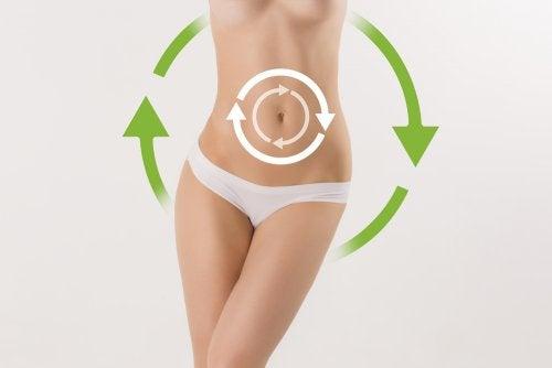 Acelerar el metabolismo, una de las mejores opciones a la hora de perder peso