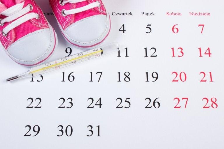 ¿Cómo calcular los días fértiles?