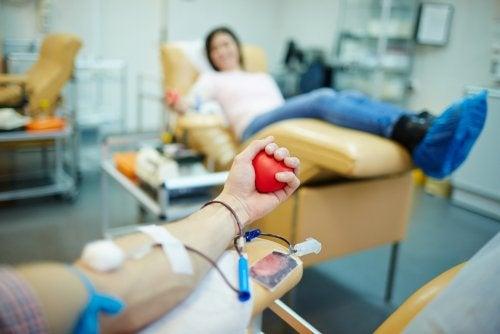 ¿Cuáles son los requisitos que debe cumplir un donante de sangre?
