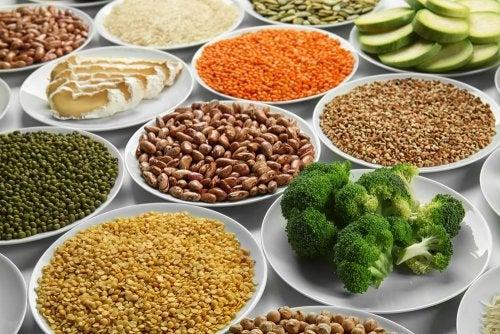 ¿La proteína vegetal es suficiente para un deportista?