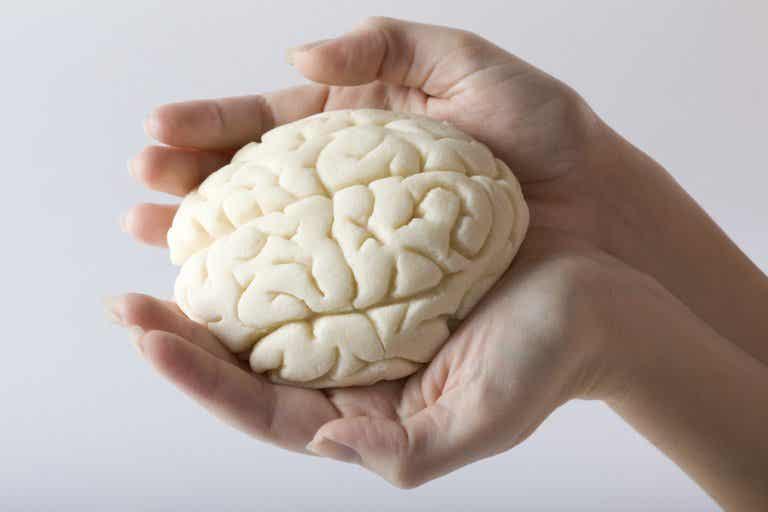 5 mejores ejercicios para mejorar nuestra memoria