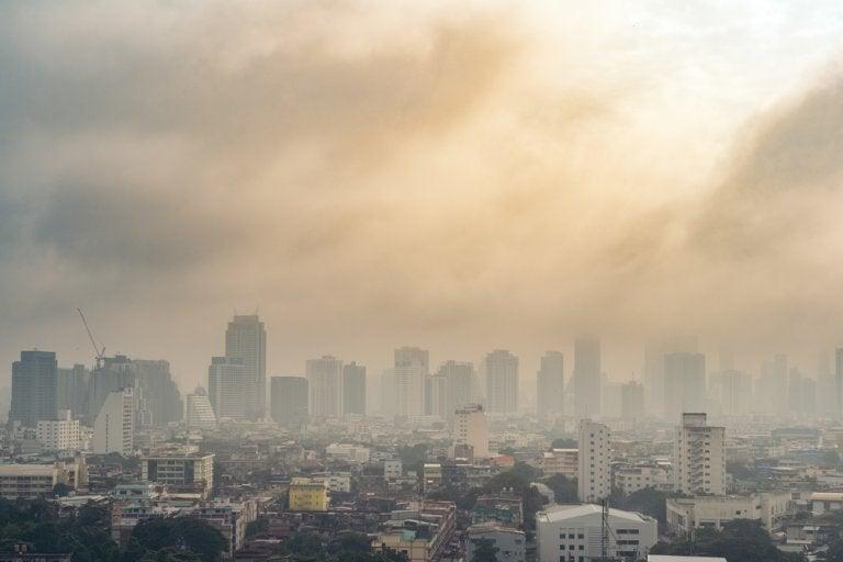 5 hábitos para reducir los efectos de la contaminación en el cuerpo