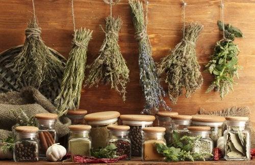 Hierbas aromáticas: el secreto de la cocina mediterránea