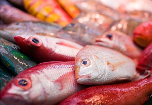 6 tipos de pescado que no debes consumir
