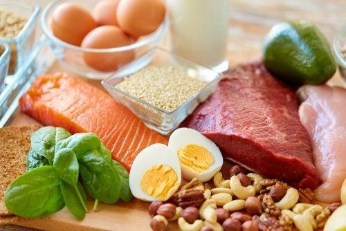 ¿Por qué son saciantes las dietas ricas en proteínas?