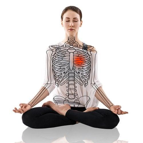 La anatomía del yoga
