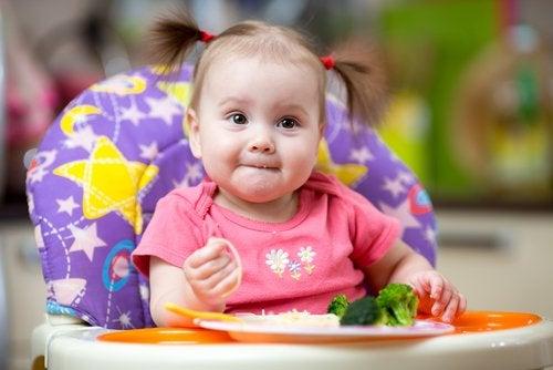 Brócoli en la dieta infantil: descubre por qué es tan recomendado