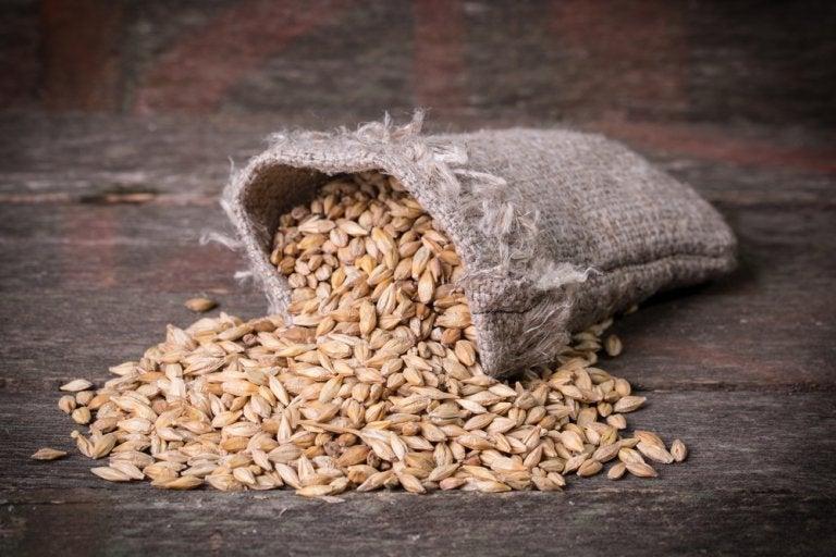 5 maneras de utilizar cebada como remedio digestivo