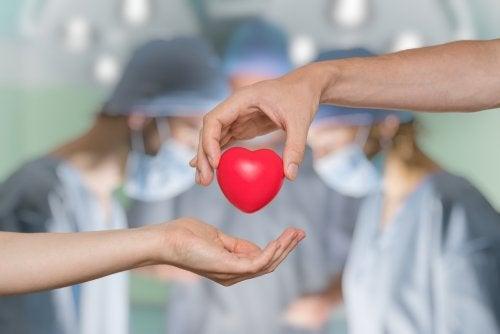 ¿En qué consiste la donación de órganos?