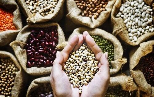 ¿Cuál es el aporte de las legumbres en la dieta?