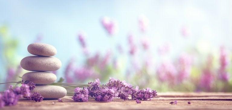 7 sencillos remedios herbales para decirle adiós al estrés