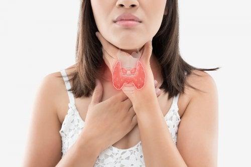 Cuidar la tiroides: la alimentación que la favorece