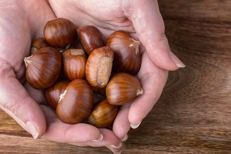 7 propiedades de la castaña para la salud corporal