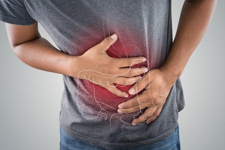 5 infusiones para desintoxicar el colon