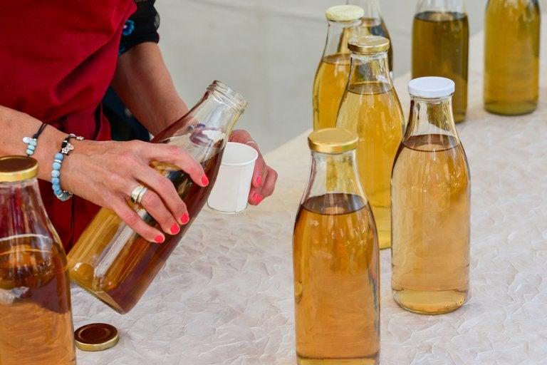 Características y riesgos del té de Kombucha