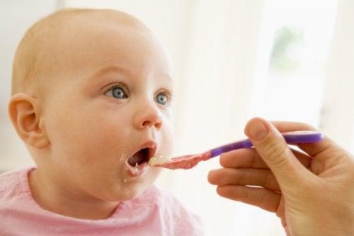 Cómo preparar comidas saludables para tu bebé: 10 opciones