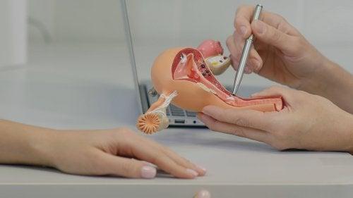 Relaciones sexuales después de una histerectomía