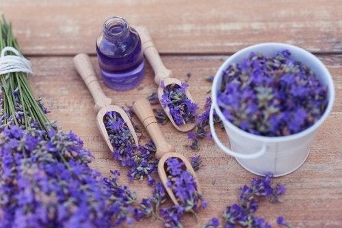 5 remedios relajantes con lavanda