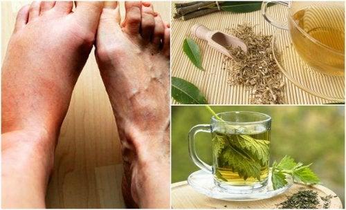 6 tés herbales para bajar el nivel de ácido úrico