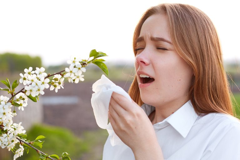 Combatir la alergia al polen: 8 consejos
