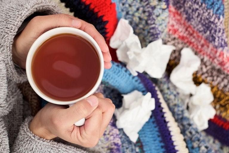 Cómo preparar 3 remedios expectorantes para la tos