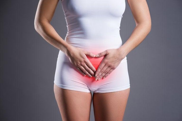 Consejos nutricionales para mejorar la endometriosis