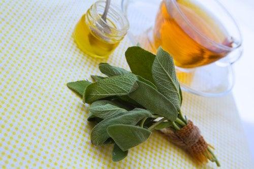 Preparado de salvia y miel para tratar cortes y raspaduras