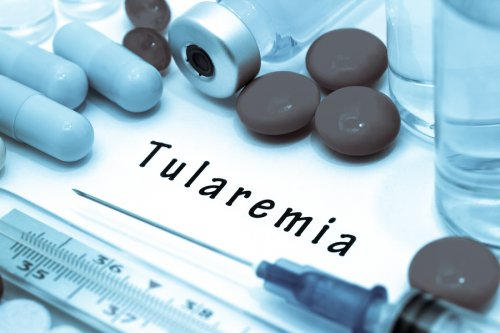 Tularemia: síntomas y causas