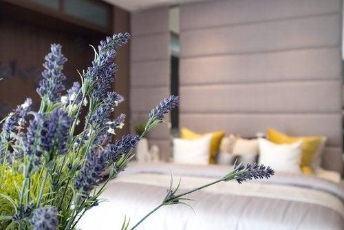 10 claves para una buena higiene del sueño